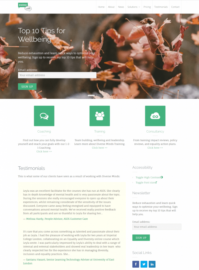 Diverse Minds website - homepage